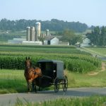 Lapp Structures History Best Amish Shed Company Lancaster PA