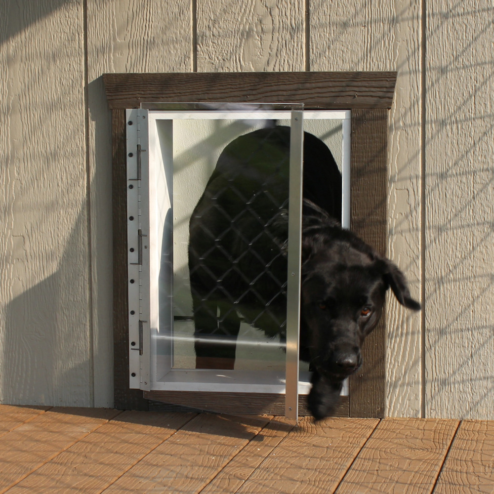 Dog Entry Door