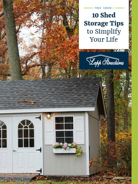 Ten 10 best shed storage tips to simplify your life